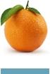 orange-ico